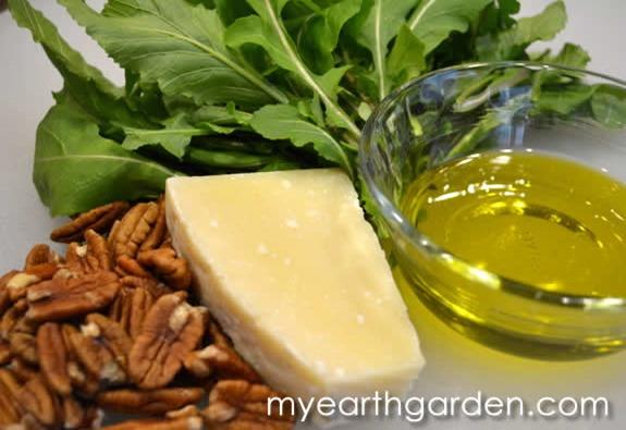 arugula-pesto-ingredients