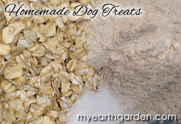 dog-treats-ingredients