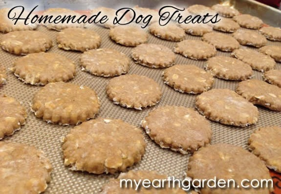 dog-treats-tray