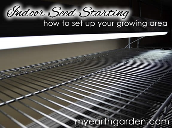 indoor-seed-starting-aread-setup