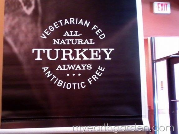 vegetarian chicken 2