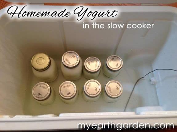 yogurt-cooler