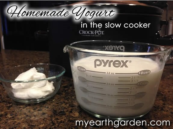 yogurt-ingredients