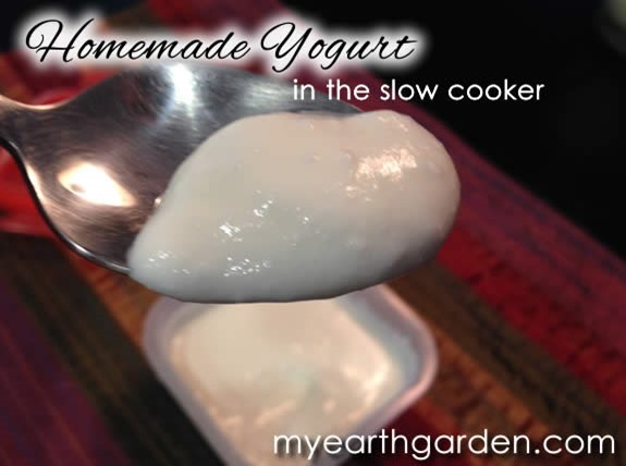 yogurt-spoon