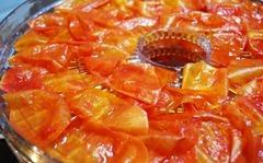 tomato peels 2
